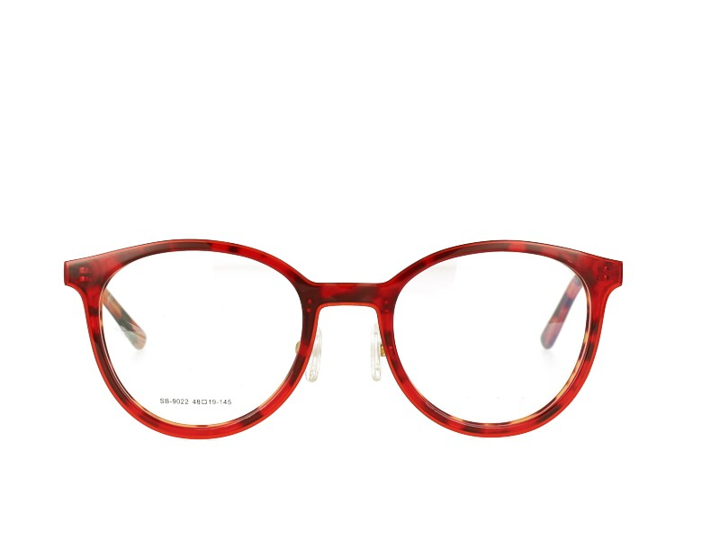 Acetate Prescription Glasses and Metal Temples frame