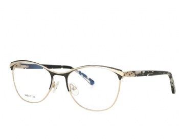Cat Eye Woman Full Rim Metal Frame Acetate temple